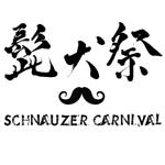 schnauzer-carnival-2016-icon